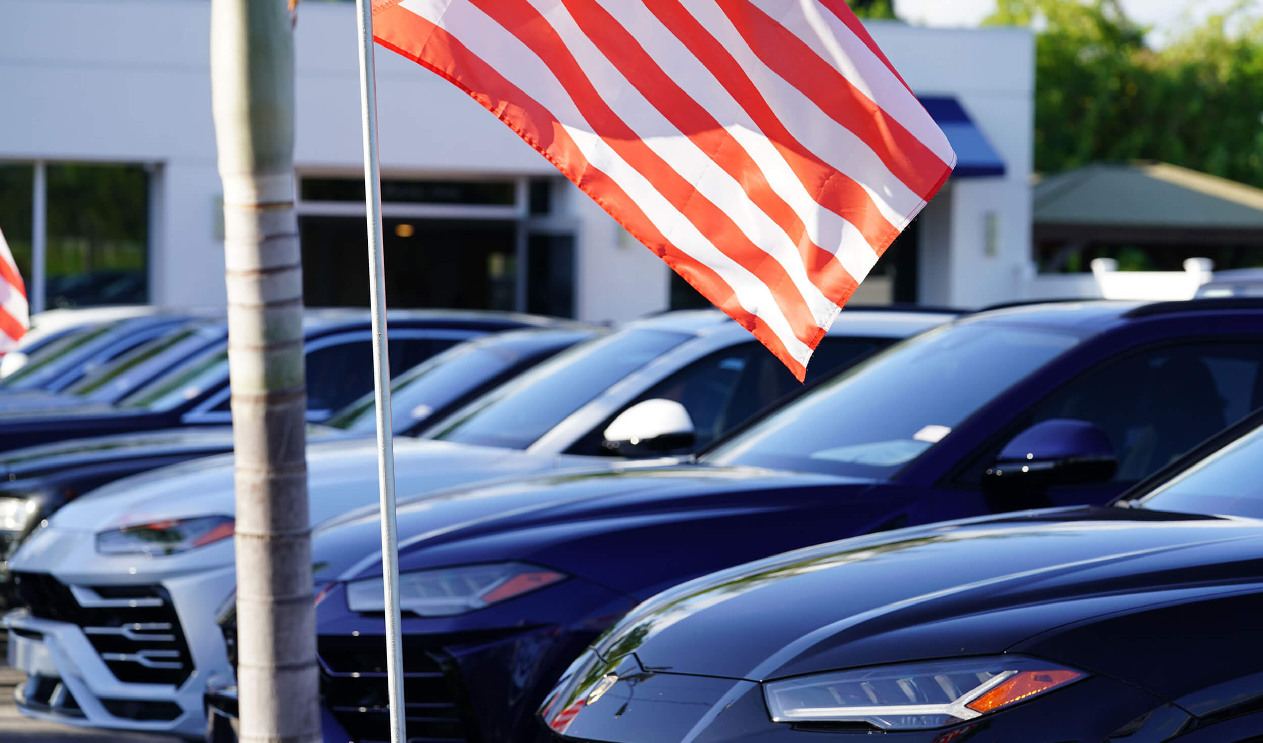 Exterior image of Palm Beach Auto Group dealership: closeup of flag with line of cars as background.